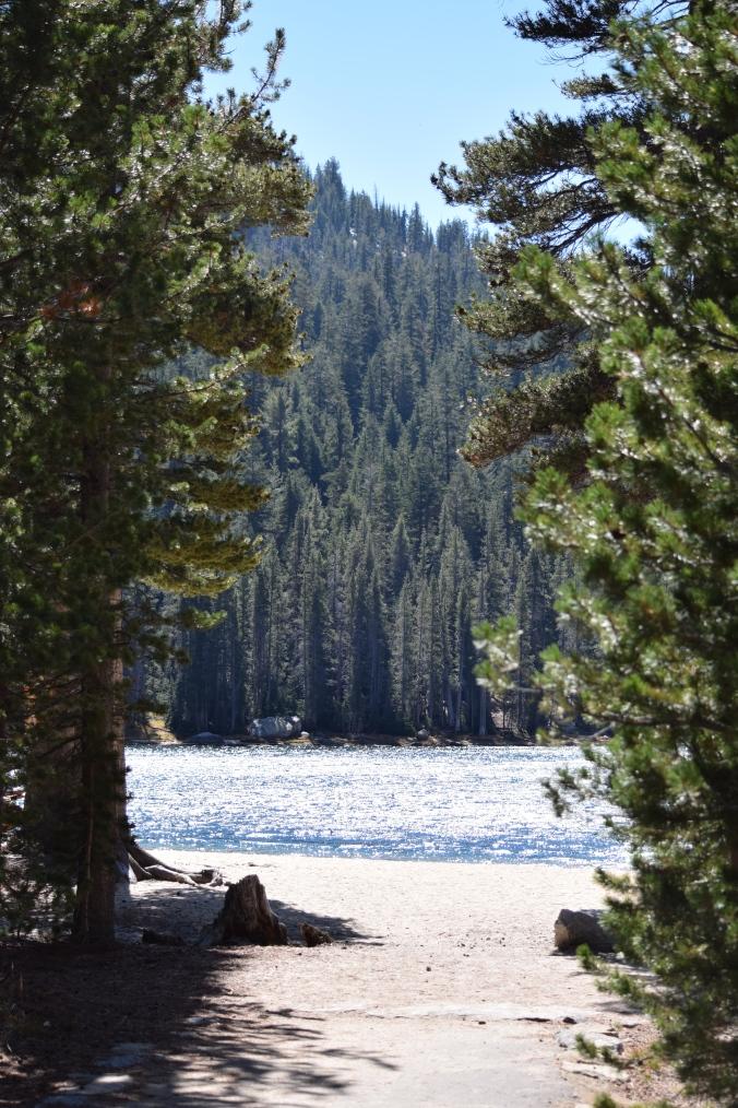Road trip dans les parcs américains, visite de Yosemite et de son superbe lac Tenaya Lake